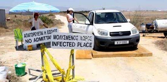 Hastalık Tek Kıbrıs'ın Güneyi'nde Mi Var?