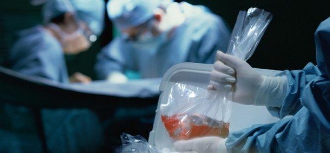 Fransa'da aksi belirtilmedikçe organlar bağışlanmış sayılacak