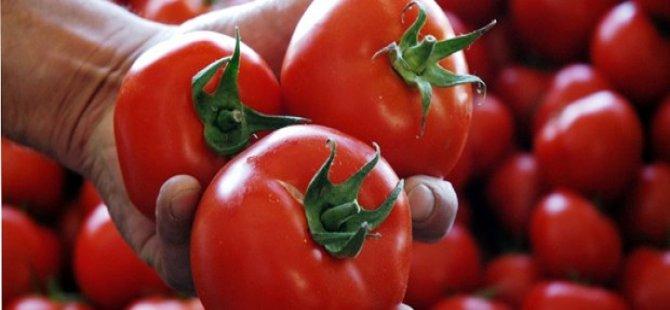 Rusya Türk domatesinde ambargoyu kaldırmayacak