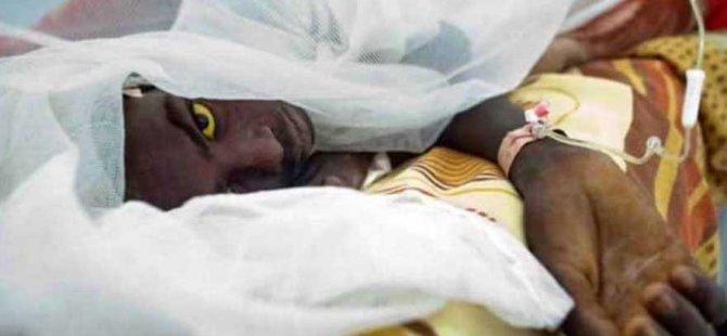 Ririo De Janeiro'da sarıhummadan ilk ölüm vakası