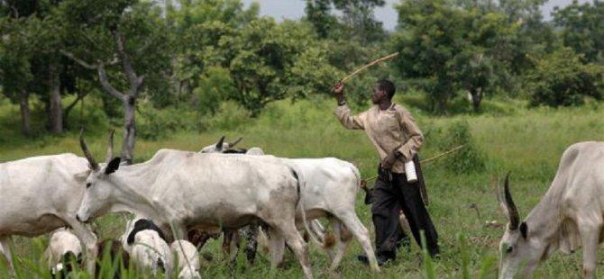 Nijerya'da çobanlarla çiftçiler arasında çatışma iç savaşa dönüşebilir