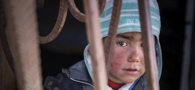 Dünyada en çok mülteci Türkiye'de