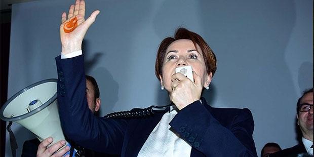 """""""Meral Akşener'in yeni partisinin logosu belli oldu"""""""