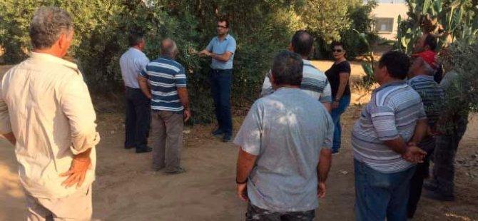 Tarım Dairesi eğitim çalışmaları bu hafta Ozanköy'de devam edecek