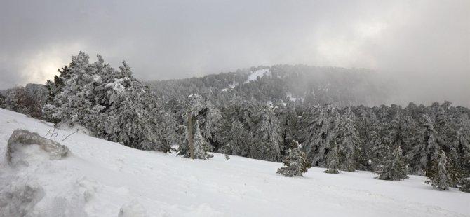 Trodos'da kar yağışı