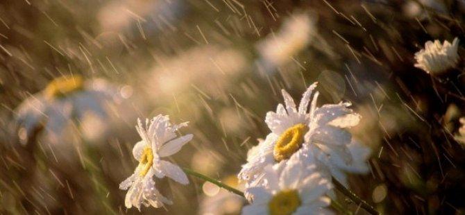 En fazla yağış Alevkaya'da kaydedildi