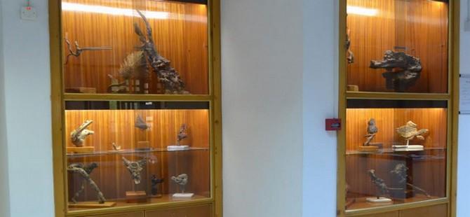 Şinasi Tekman'ın 76 adet heykeli DAÜ kütüphanesinde yaşamla buluştu