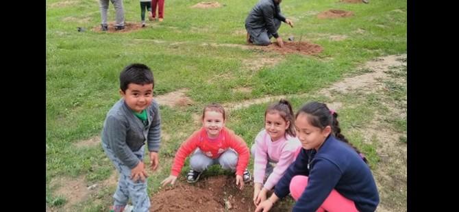 KKTC Alevi Kültür Merkezi Gazimağusa Şubesi ağaç dikti
