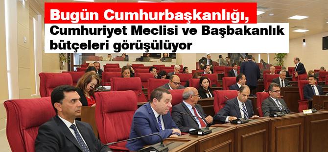Bugün Cumhurbaşkanlığı, Cumhuriyet Meclisi ve Başbakanlık bütçeleri görüşülüyor