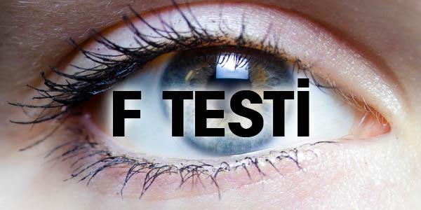 F Testini Yapın