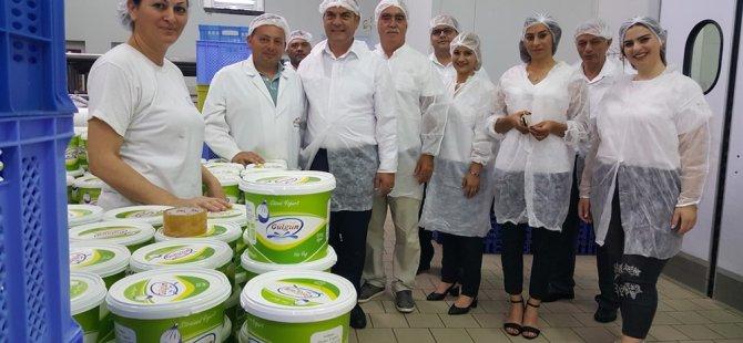 Karavezirler süt ürünleri üreticilerini ziyaret etti