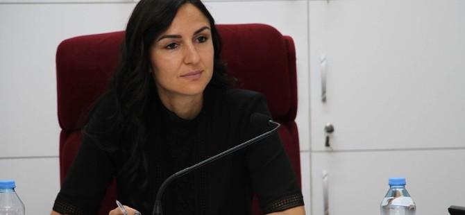 İdari, Kamu ve Sağlık İşleri Komitesi tasarıyı onayladı