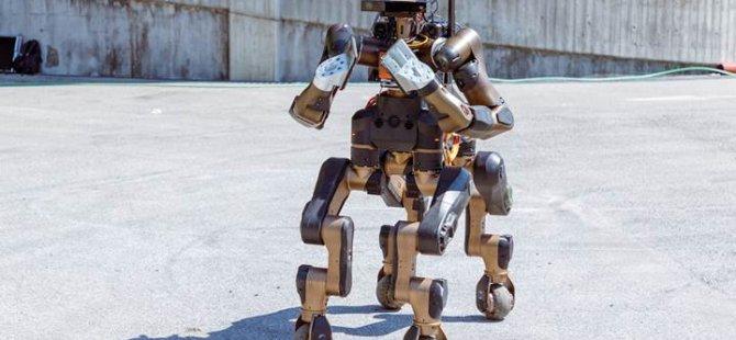 Dört bacağa ve iki kola sahip afet müdahale robotu: Centauro