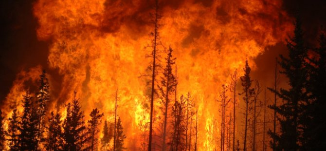 Rum Orman Dairesi orman yangını riski olduğundan kırmızı alarm hava sıcaklığı için de sarı alarm verdi