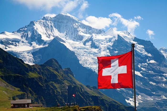 İsviçre'de bir garip referandum: Boynuzlu mu olsun boynuzsuz mu?