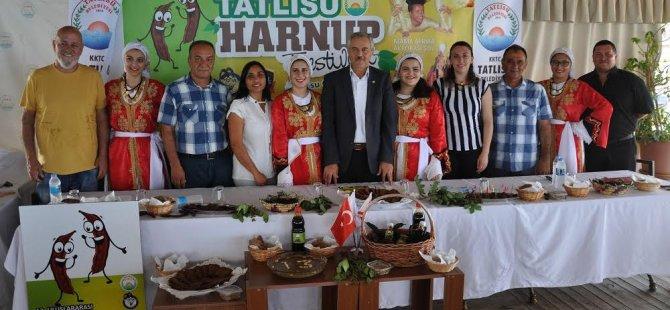 Tatlısu Harnup Festivali Başlıyor