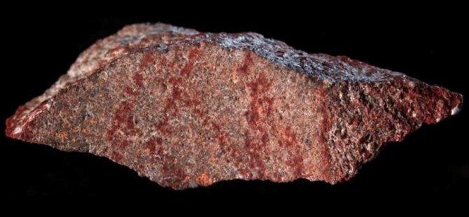 Kaya üstünde 'en eski çizim' bulundu