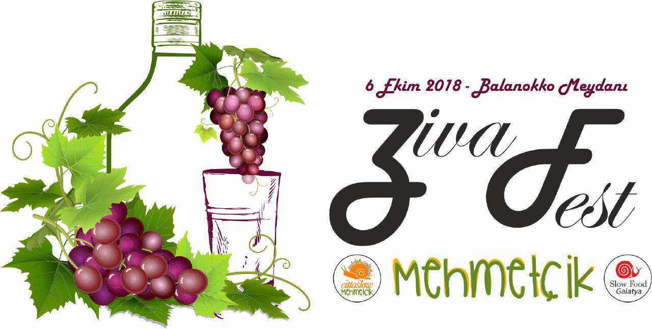 """Mehmetçik'te """"Zivaniya Festivali"""" düzenleniyor"""