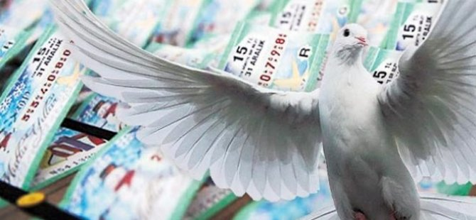 Talih kuşu Lefkoşa'ya kondu