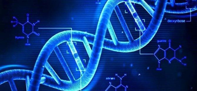Bilim insanları: 'Eşcinsel geni' diye bir şey yok ancak genetik yapı cinsel yönelimi etkiliyor
