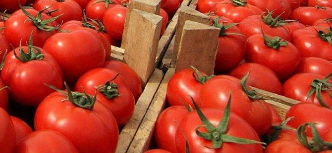 """Güney Kıbrıs, KKTC'den domates ithal edecek"""" iddiaları gerçek değil!"""