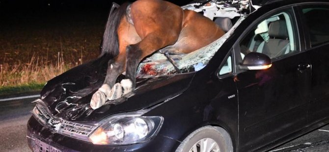Image result for almanya'nın versmold kaza at