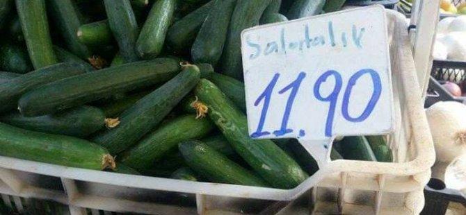 Salatalık 12 TL'den raflarda