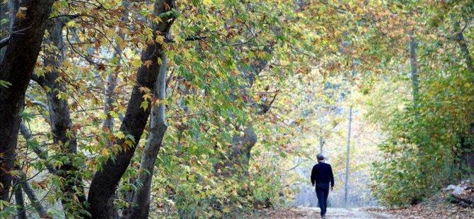 'Akdeniz'in Sibiryası' sonbahar renkleriyle ısıtıyor