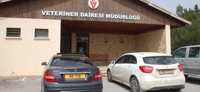 Ozanköy'de mühürsüz domuz, kuzu ve dana eti ele geçirildi