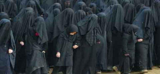 Hollanda'da burka krizi!