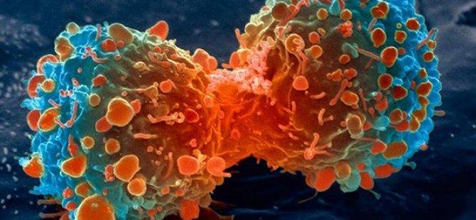 Kanserin en önemli 10 belirtisi