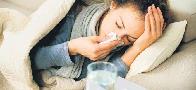 Bu kışın belası gergedan virüsü!