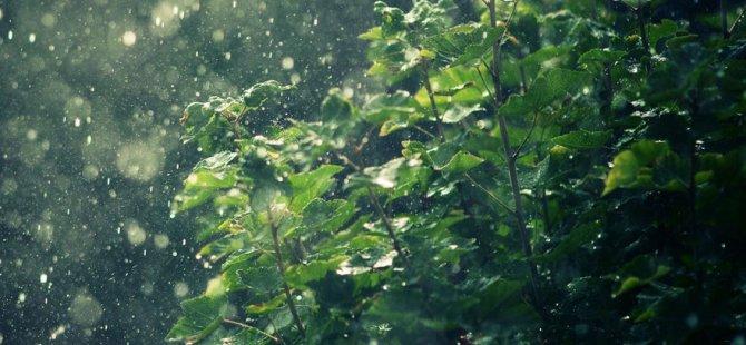 Zaferburnu'na 12 kilogram yağış düştü