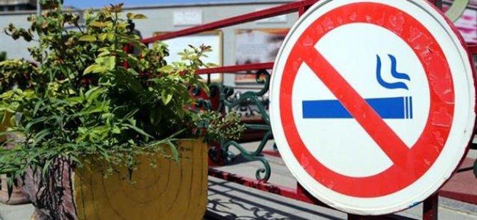 Tütün satışının sonuna mı geliniyor? İsveç'ten sonra o ülke de tütün ürünlerine yasak getiriyor.