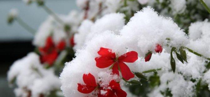 Soğuk hava ve Kar Yağışına dikkat!