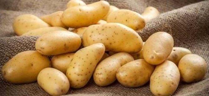 Patates boyutuna sınır