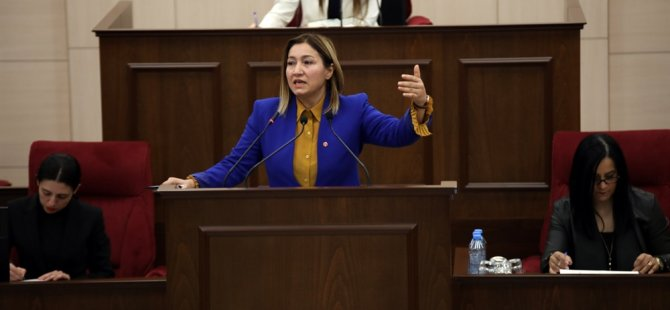 Meclis güncel konuşmalarla devam ediyor