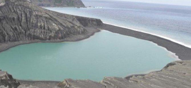Dünyanın en yeni adasında yaşam belirtisi NASA görüntüleri yayınladı