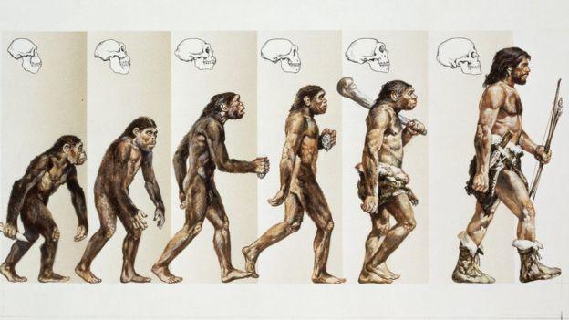 Charles Darwin: 210. doğum gününde evrim teorisini yaratan bilim adamının sıra dışı hayatı