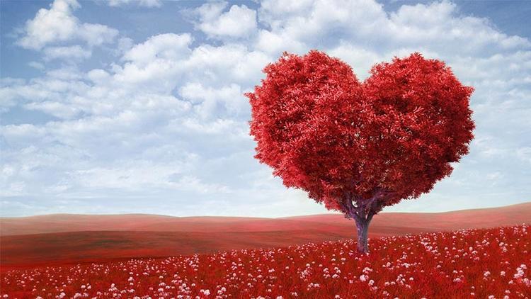 Sevgililer Günü nedir? 14 Şubat neden kutlanır?