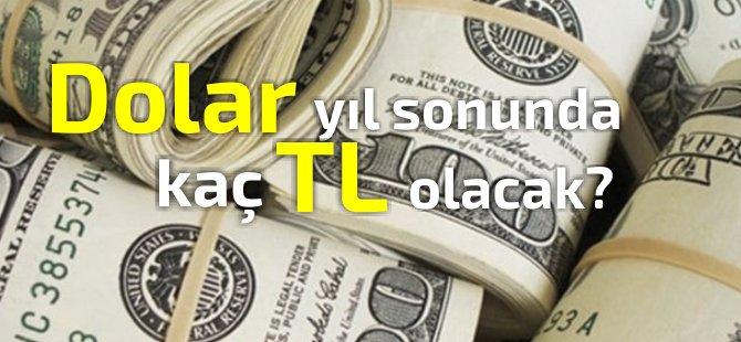 TC Merkez Bankası anketi: 2019 sonu dolar/TL tahmini dudak uçuklatacak