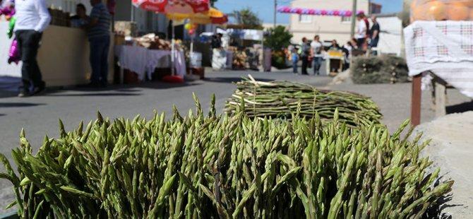 Yeniboğaziçi Belediyesi ve Slow Food Salamis, ayrelli günü düzenliyor