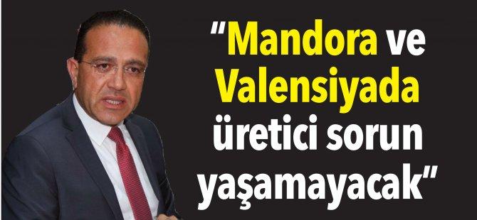 """""""Mandora ve Valensiyada üretici sorun yaşamayacak"""""""