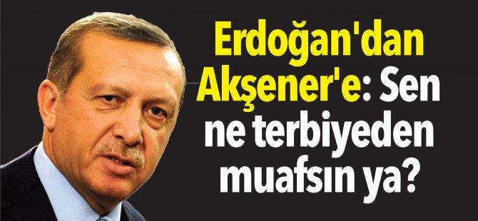 Erdoğan'dan Akşener'e: Sen ne terbiyeden muafsın ya?