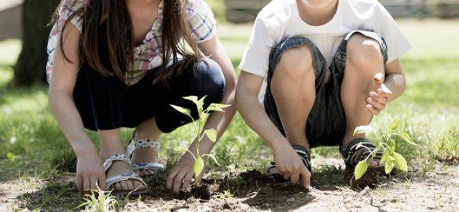 Değirmenlik Belediyesi 400 Öğrenciyle Fidan Dikecek