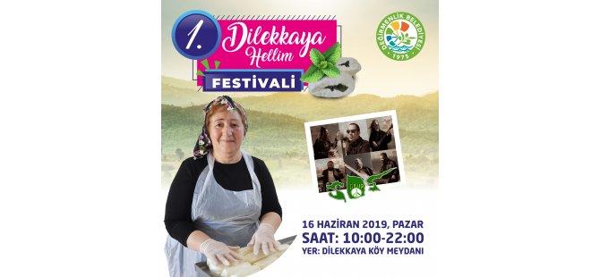 1. 1. Dilekkaya Hellim Festivali,  16 Haziran'da
