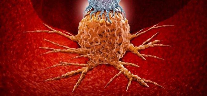 Kolon kanseri nedir? Kalın bağırsak kanseri gençlerde neden artıyor? (5 soruda kolon kanseri)