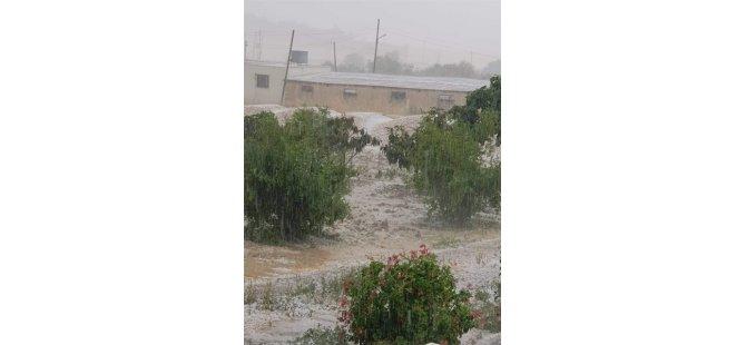 Tarım Dairesi yetkilileri olumsuz hava koşullarından kaynaklanan zararla ilgili inclemede bulunacak