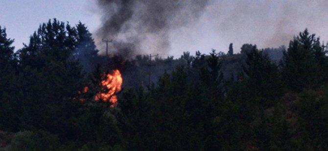 Ciklos'ta yangın:  5-6 dönümlük makilik alan yandı