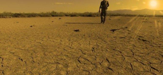 İklim Krizi - Temmuz 2019, dünyada bugüne dek 'kaydedilen en sıcak ay' olabilir